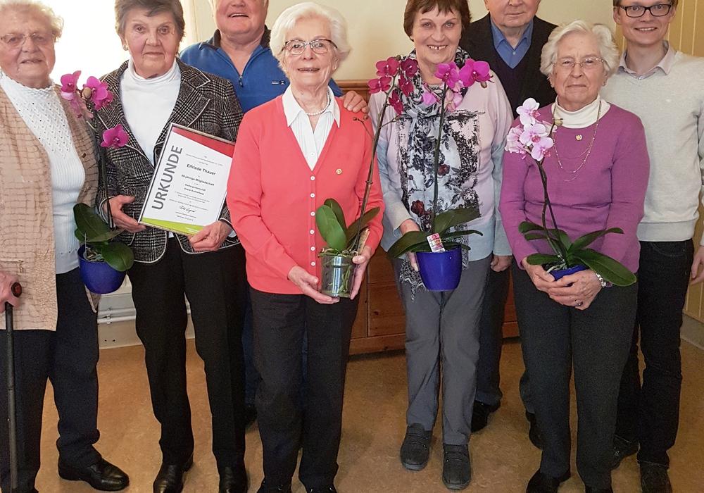 Ehrungen für lange Mitgliedschaft. Foto: Siedlergemeinschaft Sudmerberg