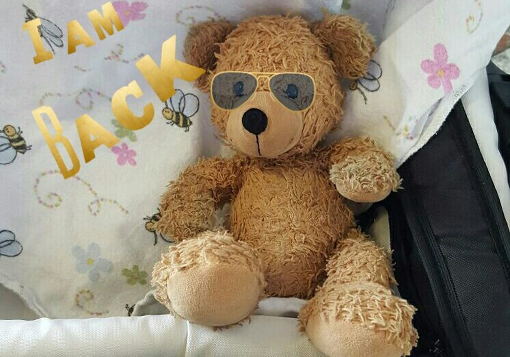 Am Dienstag dann die frohe Kunde - der Aufruf im Internet hatte gefruchtet –der Teddy ist wieder da.
