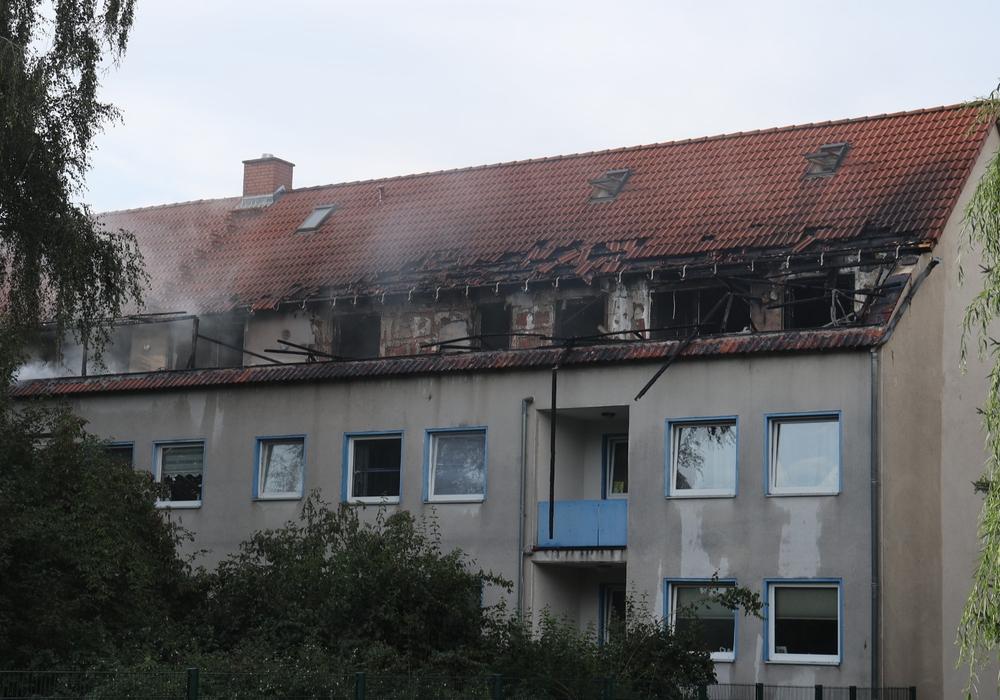 Insgesamt sollen drei Wohnungen betroffen sein. Fotos: Rudolf Karliczek