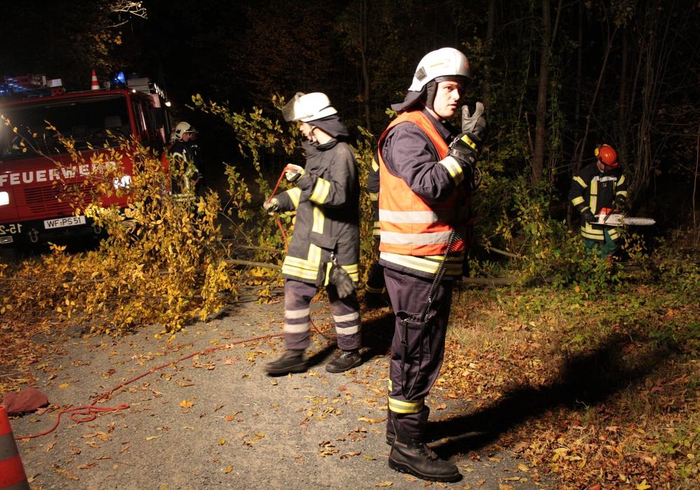 Für den Ernstfall üben die Feuerwehren auch das Szenario eines Waldbrandes. Foto: Werner Heise / Archiv