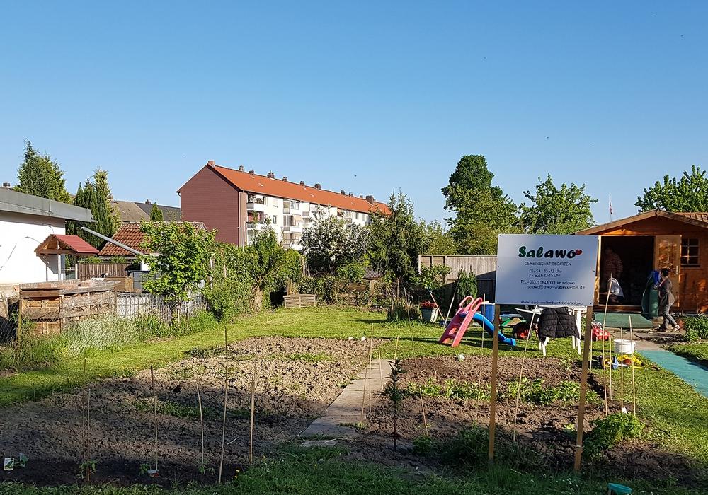 Bereits vergangenes Jahr waren die Interkulturellen Höfe im Salawo-Gemeinschaftsgarten sehr gut besucht. Foto: Stadt Wolfenbüttel