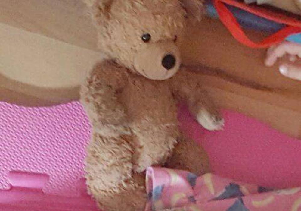 Ein Leser hat sich an die Redaktion gewandt, weil seine 4-jähriger Tochter am Freitag ihren Lieblingsteddy verloren hat. Nun wird verzweifelt gesucht.