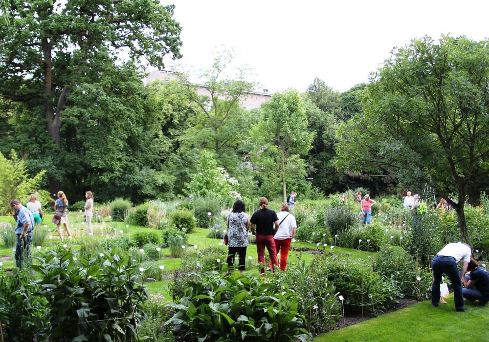 Der Botanische Garten. Foto: TU Braunschweig