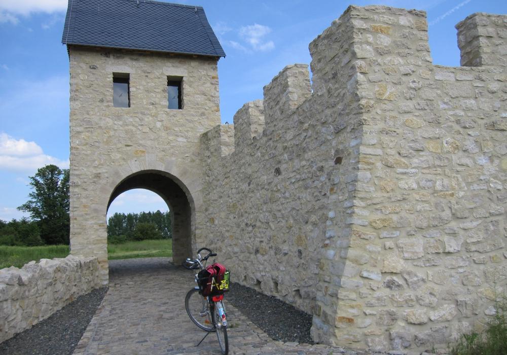 Wolfenbüttel. Für Sonntag den 3. Juli lädt der ADFC Kreisverband Wolfenbüttel alle interessierten RadfahrerInnen zu einer geführten Radtour zur Pfalz Werla ein. Foto: ADFC Wolfenbüttel