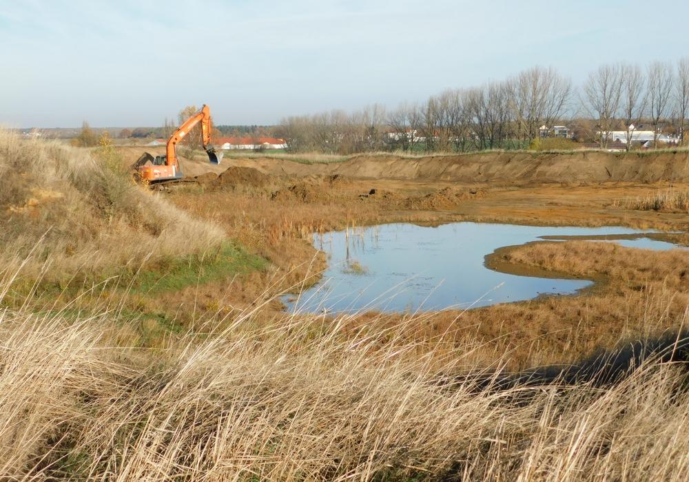Mit dem Bagger werden Renaturierungsarbeiten durchgeführt. Foto: Landkreis Wolfenbüttel
