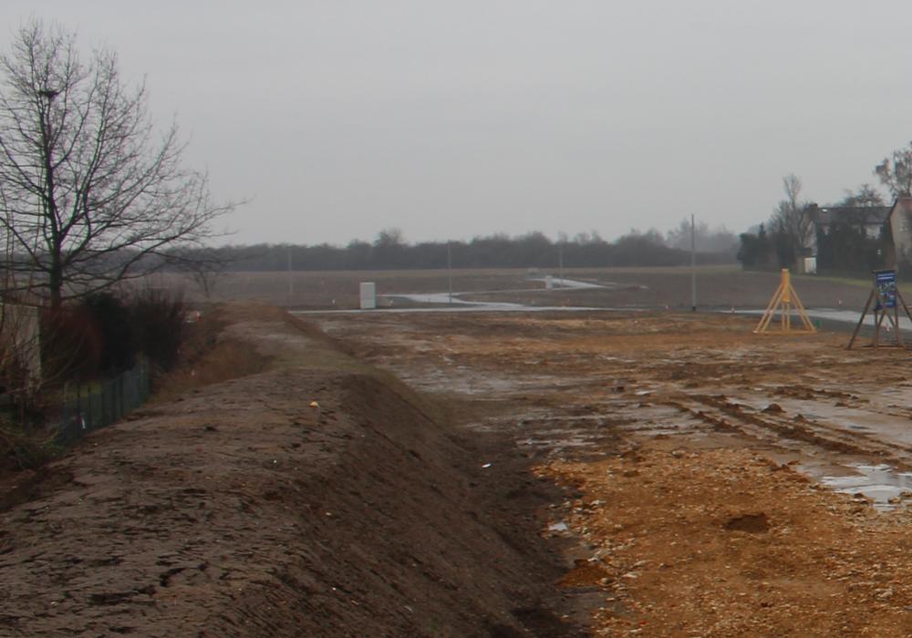 Insgesamt steht mehr als ein Hektar Baufläche zum Verkauf. Foto: Nick Wenkel