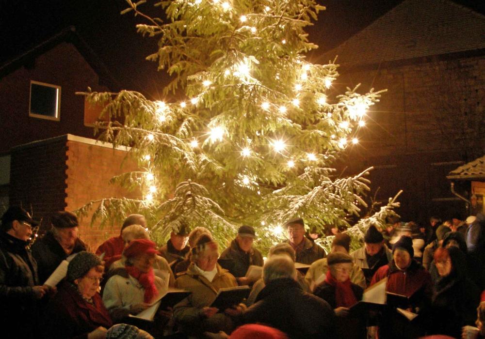 Der Weihnachtsbaum in Cremlingen wird bald geschmückt. Foto: Jörg Weber