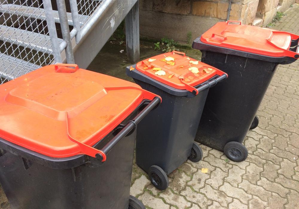 Im Innenstadtbereich von Wolfenbüttel sieht man ab und an Mülltonnen mit roten Deckeln. Foto: Privat