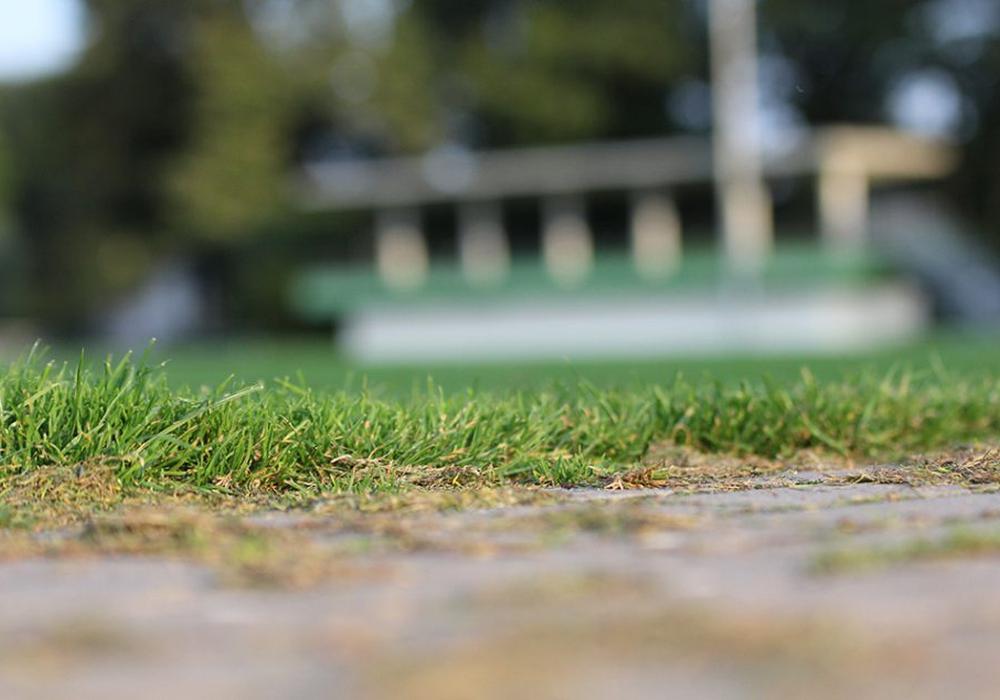 Auf mittlerweile 95 Jahre bewegte Sportgeschichte kann der Lindener SV mittlerweile zurückblicken. Foto: Frank Vollmer