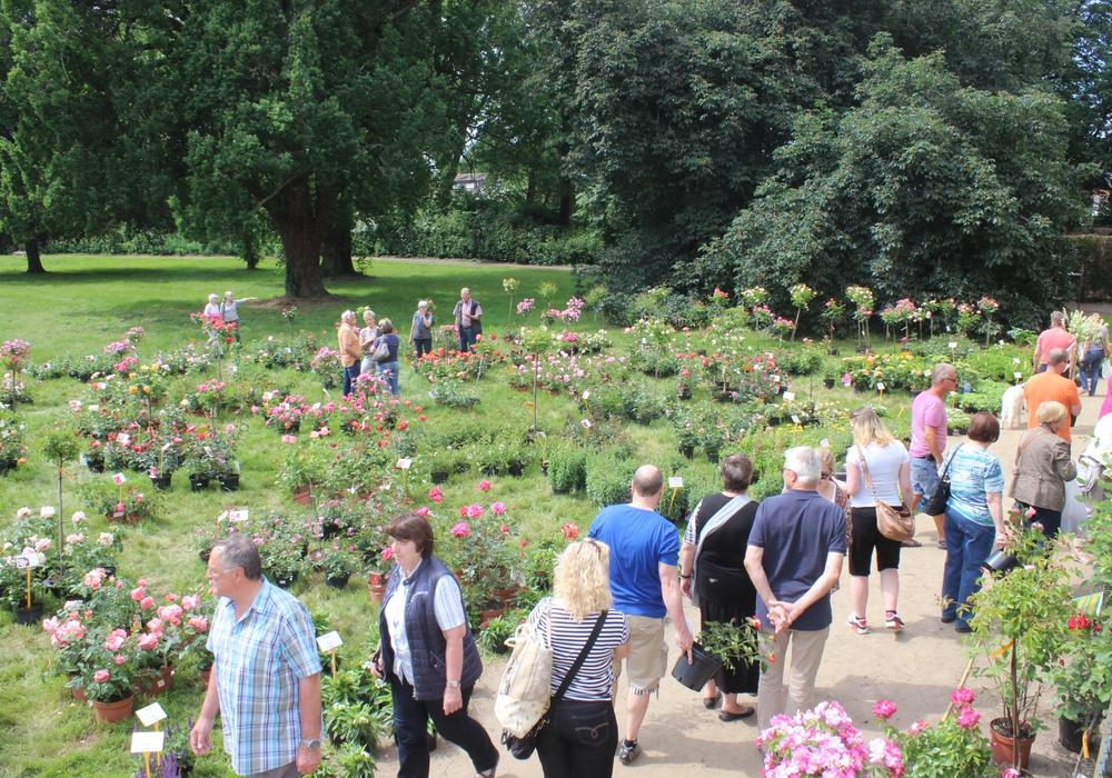 Der Gartenzauber im Park zieht auch in diesem Jahr unzählige Besucher an. Fotos: Anke Donner