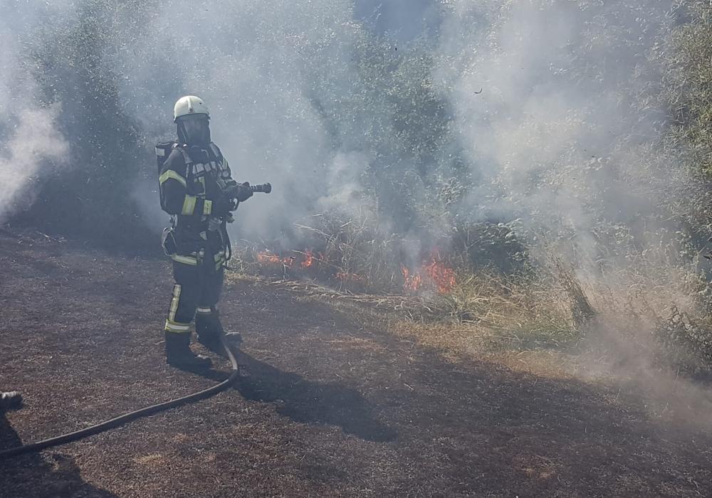Zum Einsatz kamen auch die sogenannten Feuerpatschen. Fotos: Stadtfeuerwehr-Presse-Team