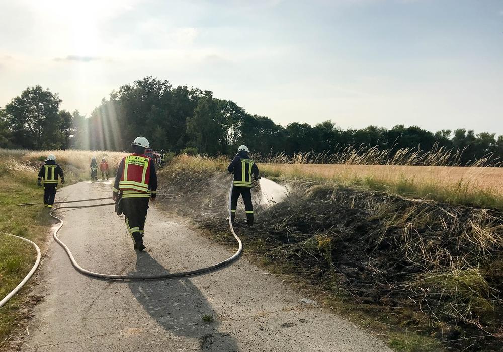 Die Feuerwehr hat dieser tage viel zu tun: Die Hitze sorgt für zahlreiche Brände in der Region. Fotos: Feuerwehr Stadt Bad Harzburg
