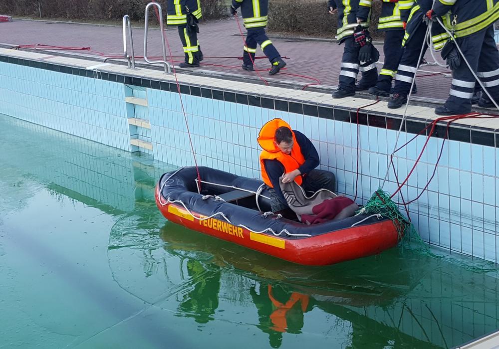 Das Reh konnte mit Hilfe eines Bootes aus dem Becken gerettet werden. Foto: Feuerwehr Goslar