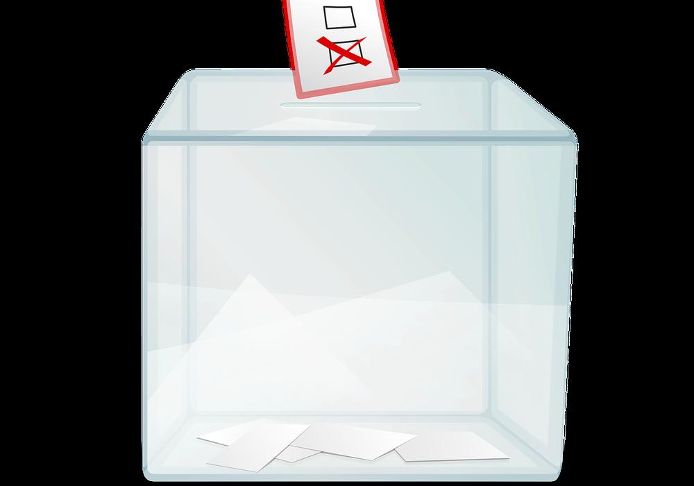 Horst Schiesgeries ist bei der Wahl des Bundespräsidenten dabei. Symbolbild: pixabay