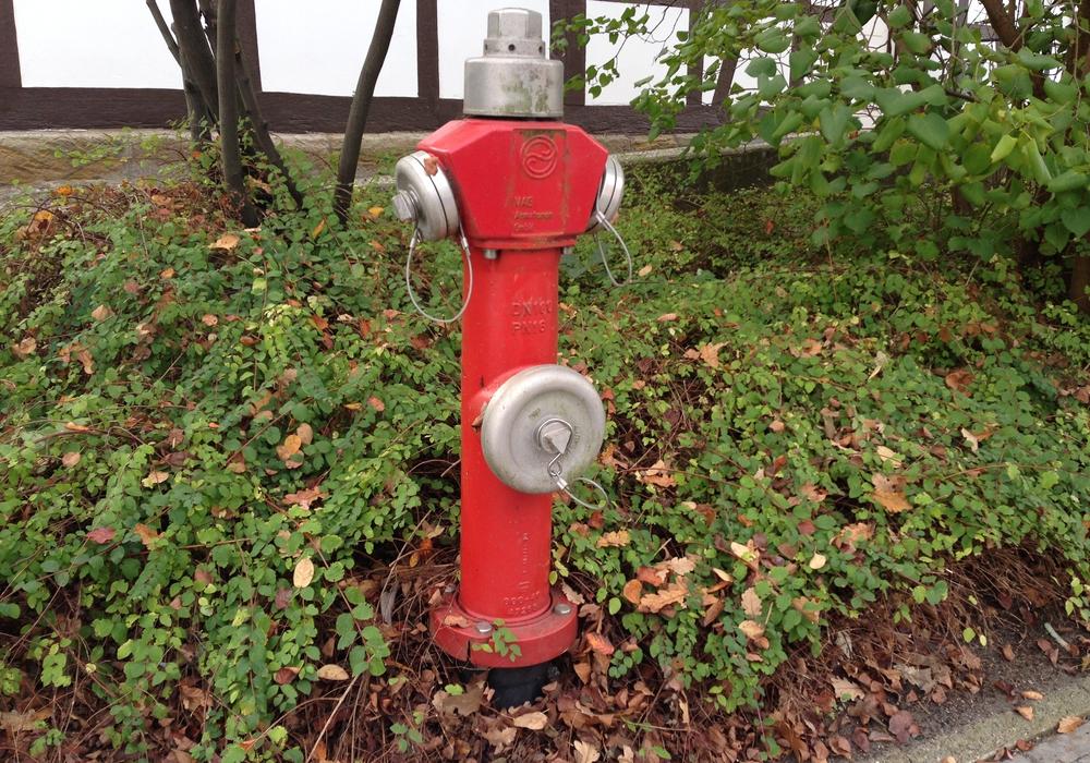 Am 14. Okotober werden in Klein Biewende die Hydranten überprüft. Foto: Anke Donner