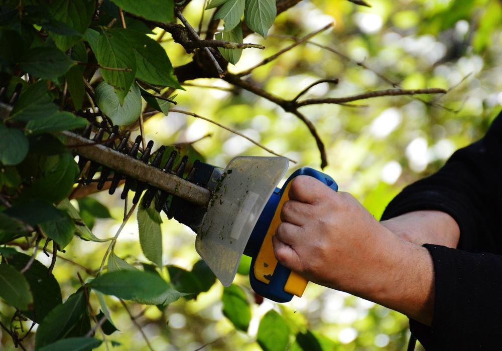 Am Landshuter Platz finden ab kommendem Montag Baumarbeiten statt.  Symbolfoto: pixabay