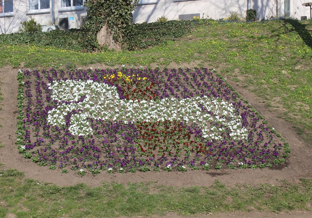 Die Lessingstadt wird schick für den Frühling gemacht. Foto: Anke Donner