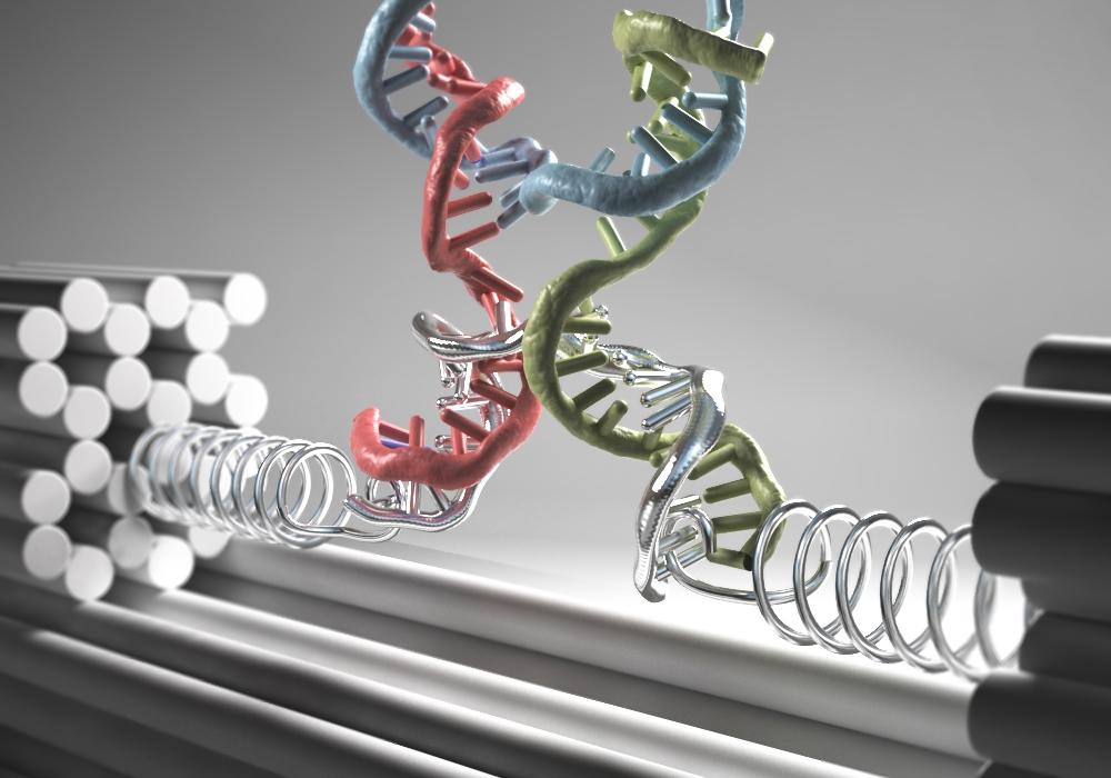 """Künstlerische Darstellung der neuartigen """"Nanoklammer"""" aus DNA-Strängen: In eine starre DNA Nanostruktur (graue Stangen) wird über eine Feder aus einzelsträngiger DNA (silberne Federn) das Zielmolekül eingespannt (hier eine DNA 4-Wege Kreuzung). Die durch die Kraft hervorgerufene Verzerrung der Struktur wird optisch detektiert. Grafik: Christoph Hohmann / LMU"""