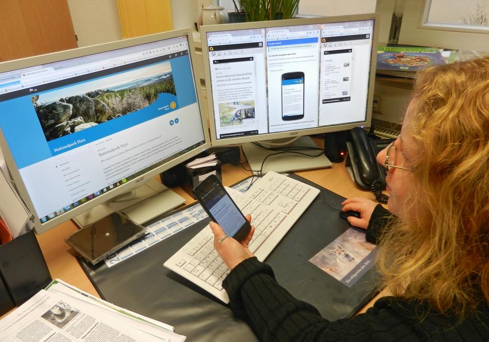 Nationalpark-Mitarbeiterin Mandy Gebara testet die neue Internetseite des Nationalparks Harz auf www.nationalpark-harz.de mit verschiedenen Geräten. Foto Juliane Hentze.