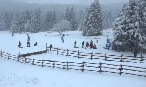 Weiße Weihnachten nicht nur im Oberharz - Noch sind die Würfel nicht gefallen. (Archivbild) Video: Marvin König / Werner Heise