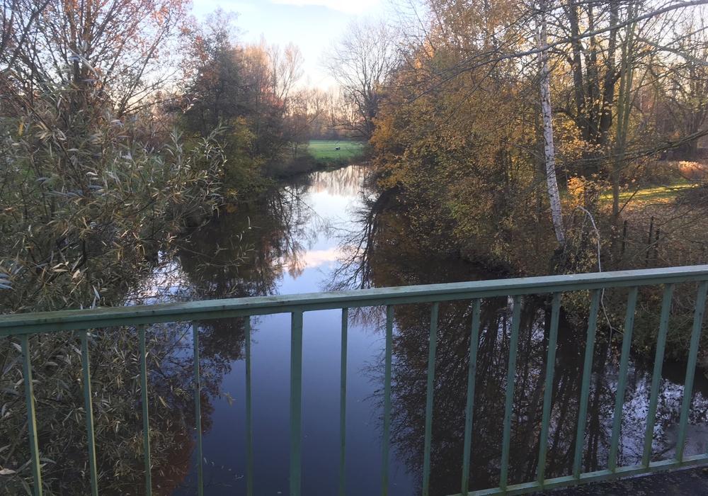 Nach derzeitiger Planung soll die Wasserfläche der Oker im Brückenbereich für die Zeit der Baumaßnahme gesperrt werden. Foto: Alexander Dontscheff
