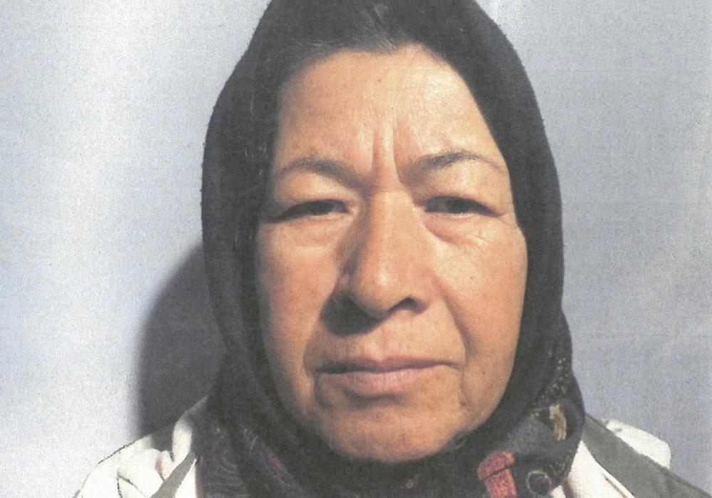 Die Vermisste Fatima Husseini. Foto: Polizei Peine