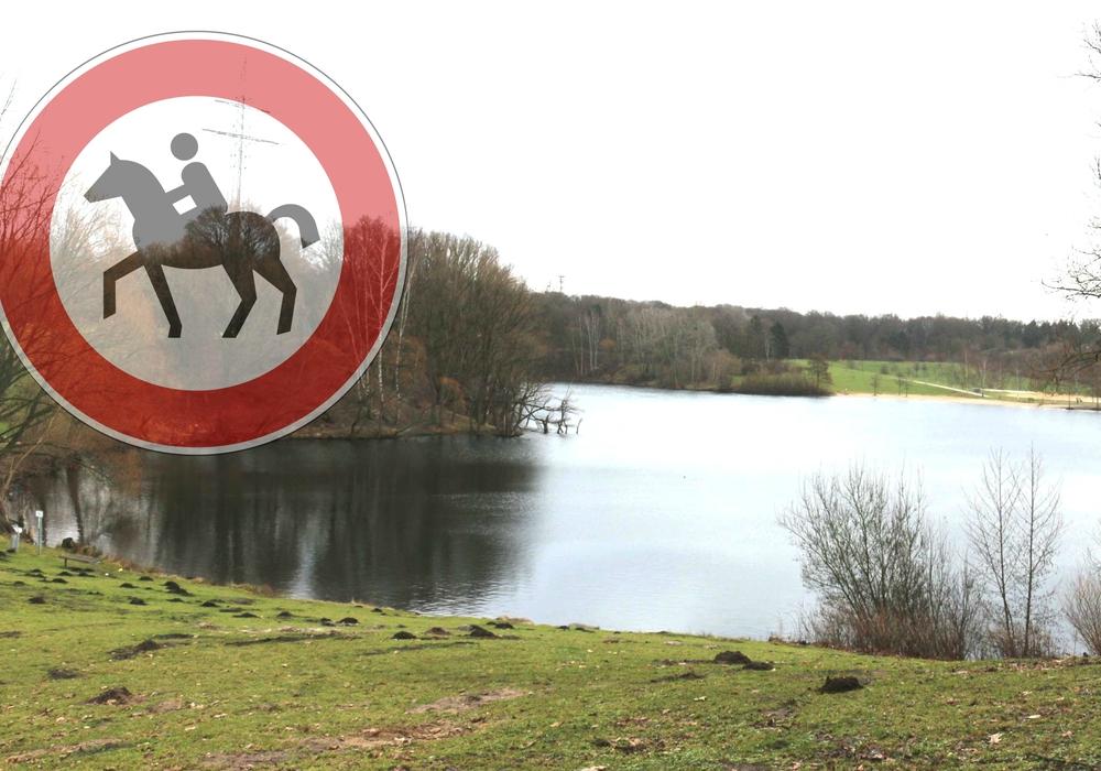 Der Blick vom Pferd auf den Heidberg könnte für Reiter bald nicht mehr möglich sein. Foto: Archiv/Pixabay