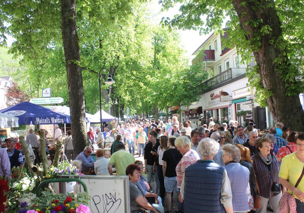 Viele Besucher zog es am Sonntag zum Kastanienblütenfest. Fotos: Anke Donner