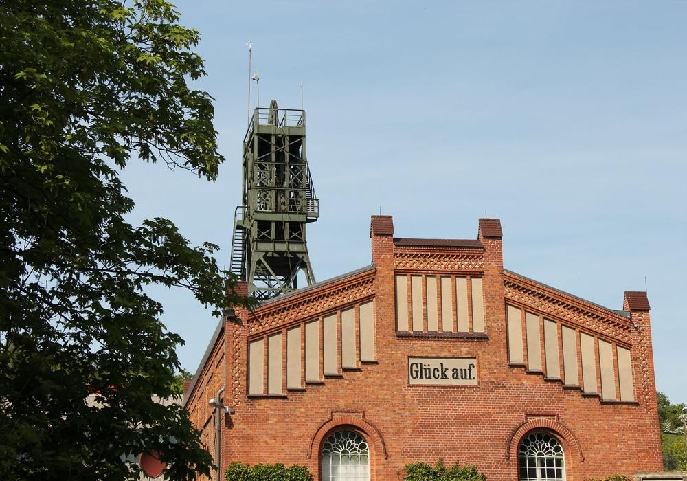 Die Asse steht im Zentrum der Mahnwache am kommenden Montag. Foto: privat