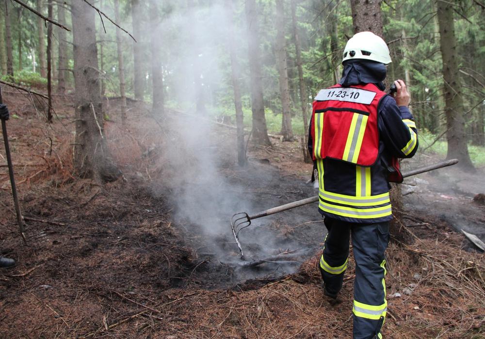 Am Donnerstag geriet Unterholz am Nordberg in Brand. Foto: Feuerwehr Goslar.