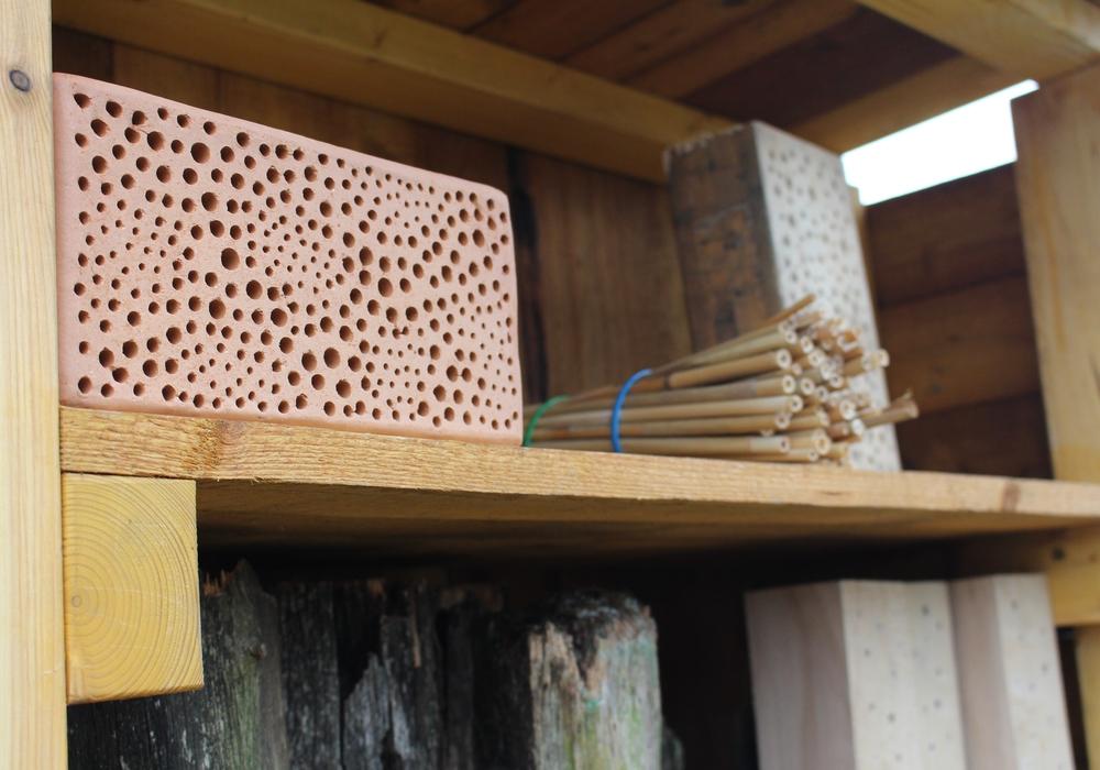 Neben der Förderung der Wildbienen sollen auch die jeweiligen Friedhöfe aufgewertet werden. Foto: Nick Wenkel