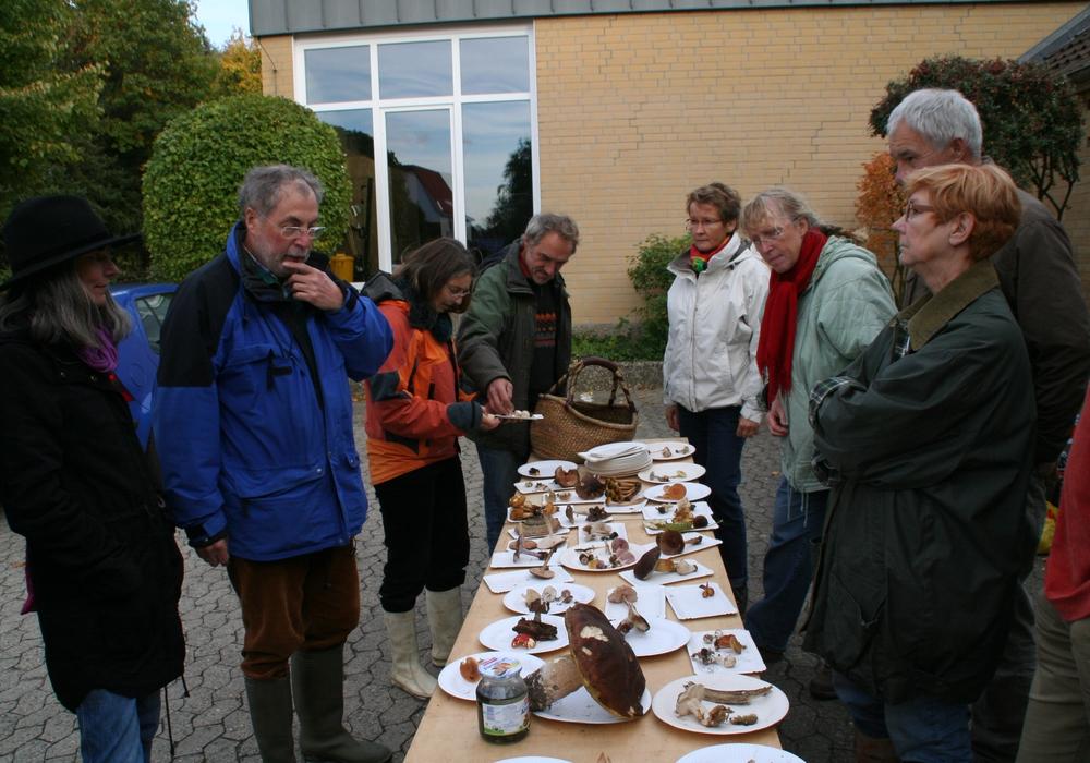 Pilzexperte Harry Anderson (2. v. L.) stellt die gefundenen Pilze vor. Foto: Diethelm Krause-Hotopp