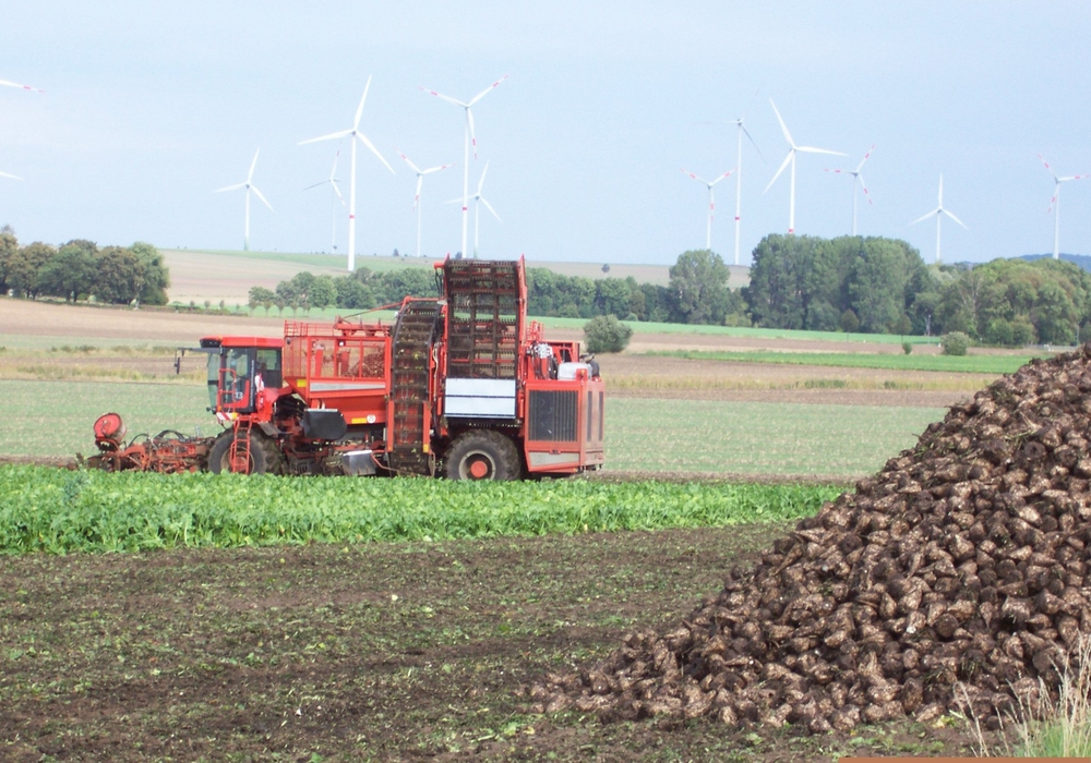 Während der Herbsternte sind viele Erntefahrzeuge unterwegs. Foto: Landkreis Wolfenbüttel