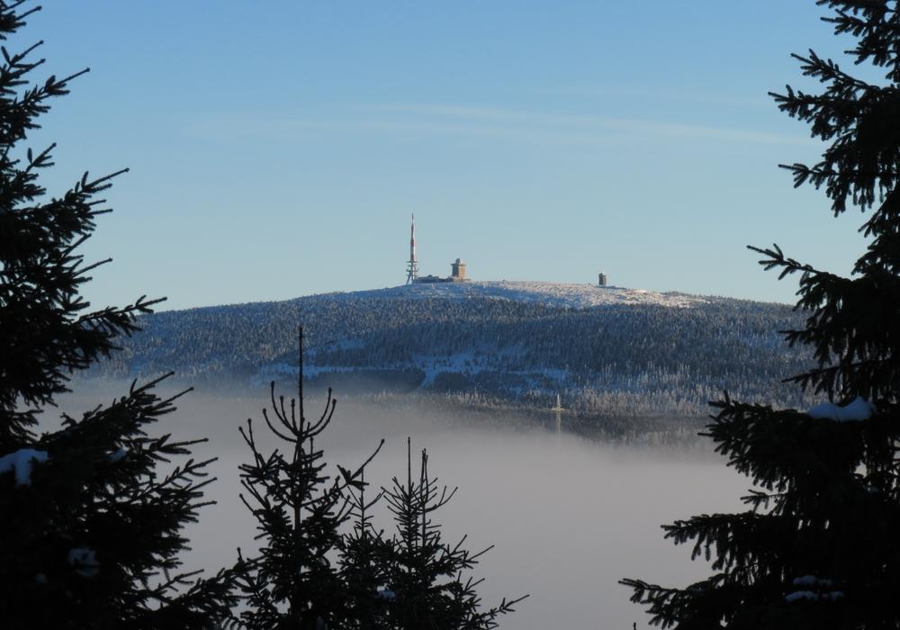 Der Brocken im Nebel. Foto: Walter Wimmer
