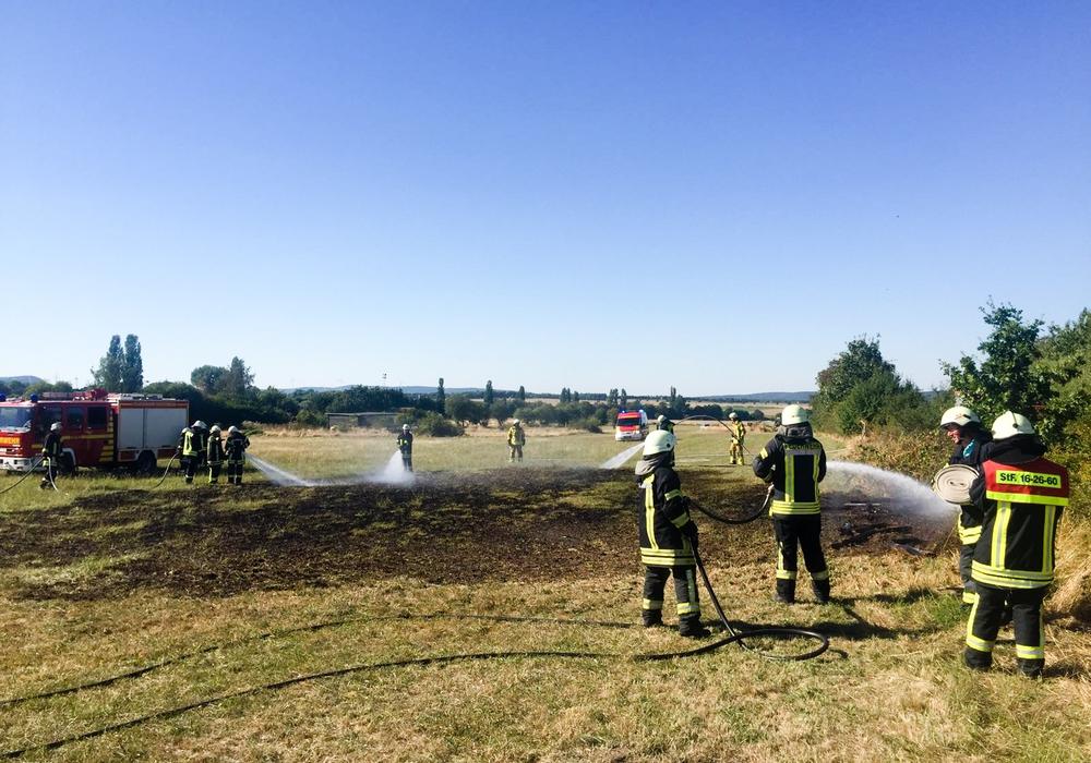 Bei Westerode kam es am Donnerstag zu einem Flächenbrand. Fotos: Feuerwehr Bad Harzburg