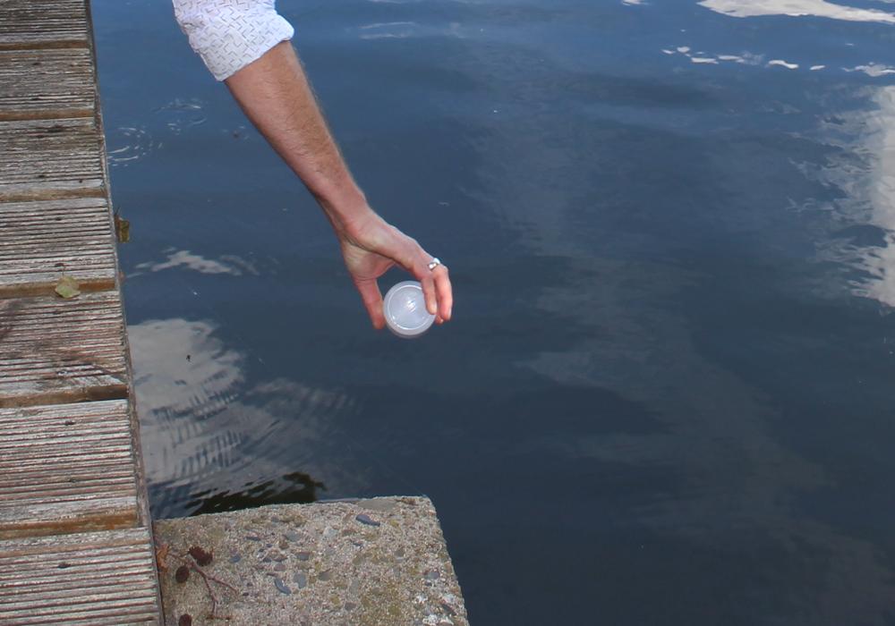 Die Wasserqualität des Lappwaldsees soll regelmäßig kontrolliert werden. Symbolfoto: Alexander Dontscheff