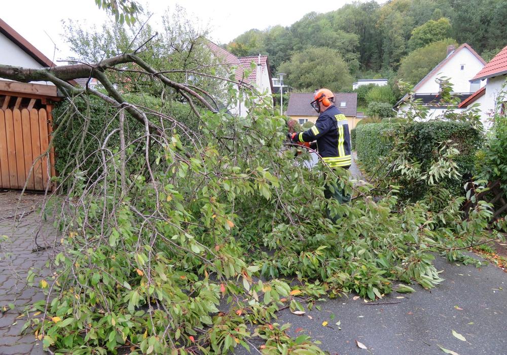 Besonders mit umgestürzten Bäumen hatten die Wehren in der Region zu tun während und nach dem Sturm. Fotos: Feuerwehr Goslar