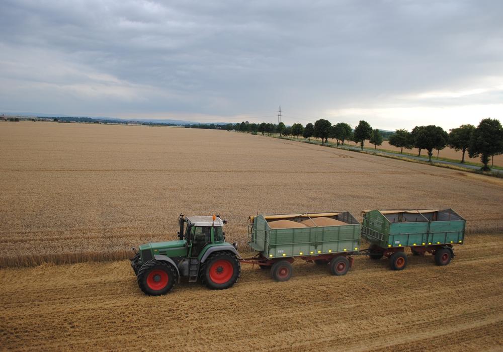 Auch in Helmstedt gibt es Probleme mit Nitraten. Foto: Marc Angerstein