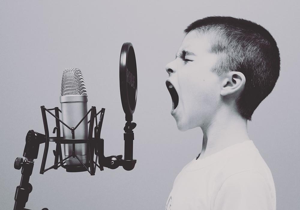 sänger, junge, mikrofon, symbolbild, gesang: Pixabay