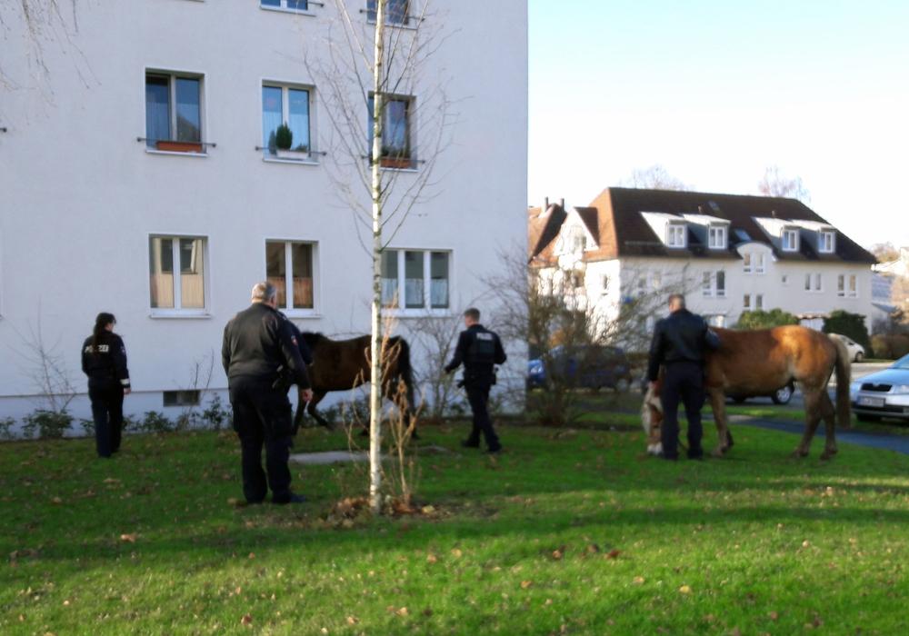 Foto: Polizei Braunschweig