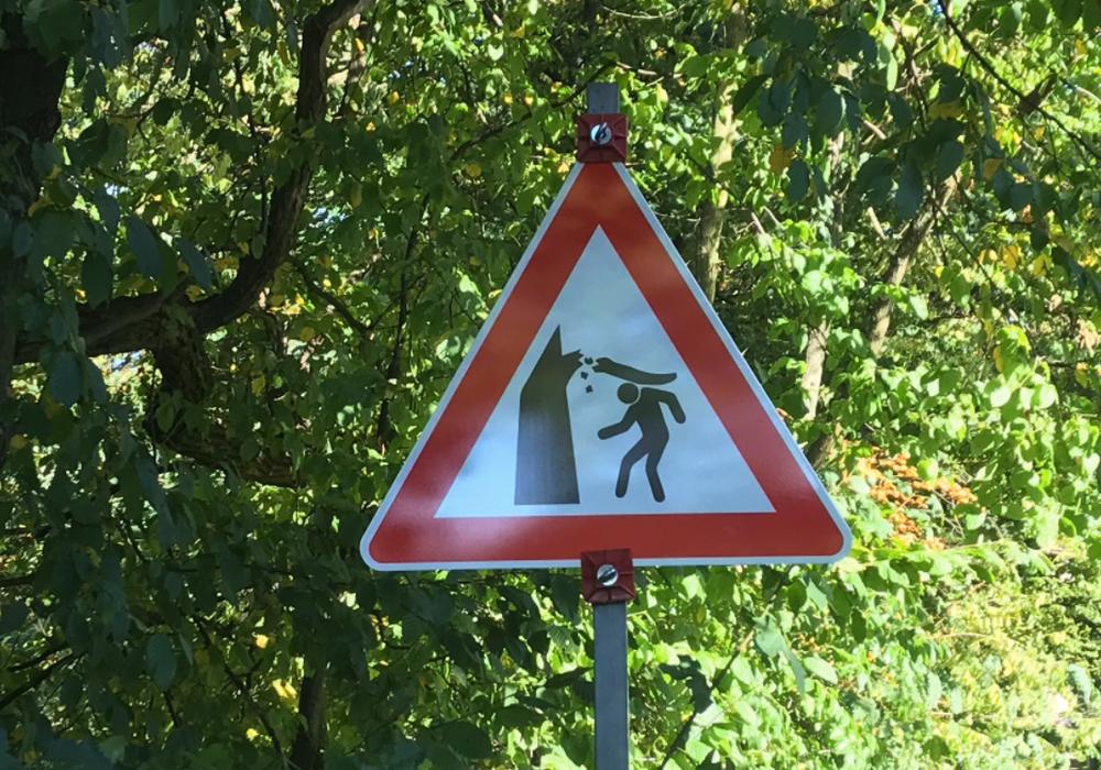 Nachdem im Prinzenpark ein Hund von einem Ast erschlagen wurde, sollen die Bäume nun kontrolliert werden.
