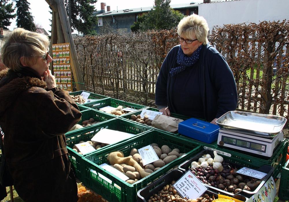 Am 9. April ist wieder Kartoffeltag im Gärtnermuseum Foto: Raedlein