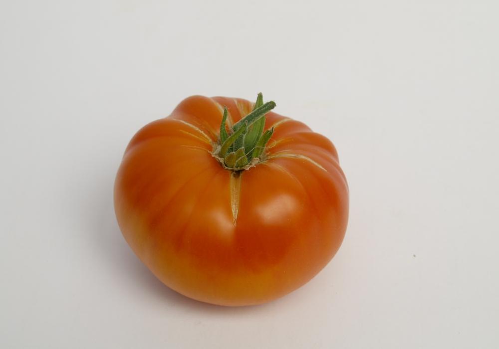"""Die Ananastomate ist in diesem Jahr """"Tomate des Jahres"""". Foto: Ingrid Ohlendorf (BUND Salzgitter)"""