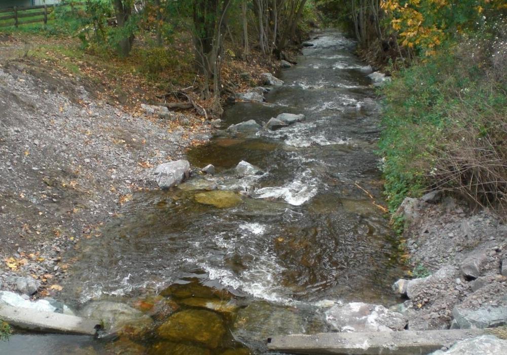 Die Umgestaltung ist ein Schritt zum Einhalt der Europäischen Wasserrahmenrichtlinie. Fotos: Stadt Goslar