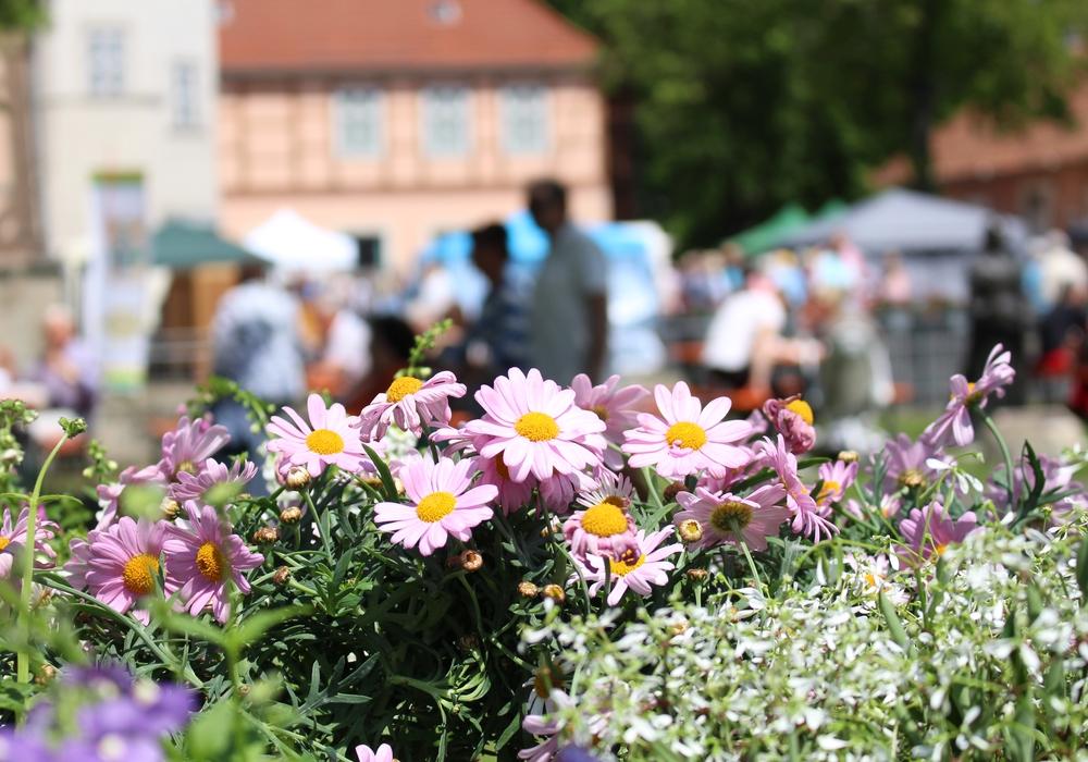 Blumen und Kräuter sorgten auf dem gesamten Schlossplatz für zahlreiche faszinierende Düfte. Fotos: Julian Bergmeier