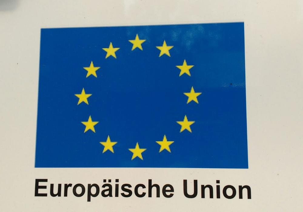 """Die Goslarer """"Pulse of Europe""""-Gruppe ruft zu einem Wettbewerb auf. Foto: privat"""