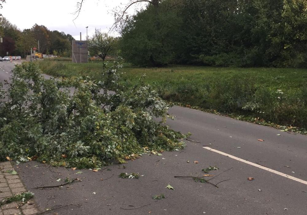 Teile Braunschweigs hatten wegen des Sturms kein Strom. Foto: Anke Donner