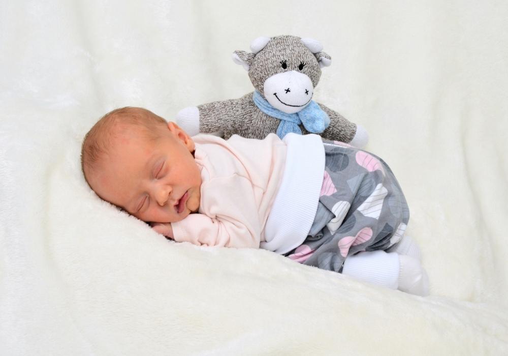 Willkommen, Charlotte Werner. Foto: babysmile24.de