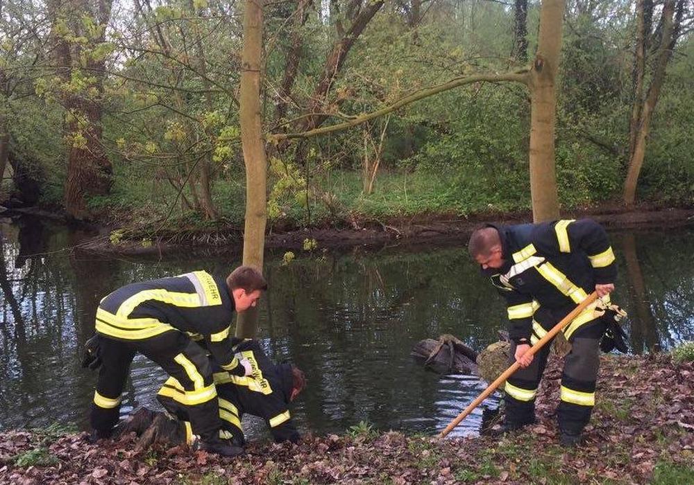 Die Einsatzkräfte bei der Bergung der Ziege. Fotos: Feuerwehr Wolfenbüttel