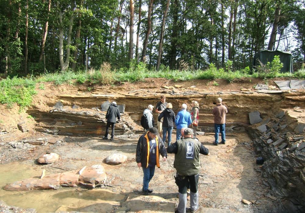 Die Ausgrabungsstätte bei Schandelah. Foto: Privat
